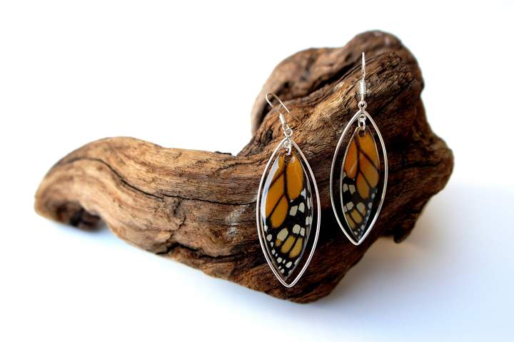 Monarch Butterfly Wing Sterling Silver Earrings.jpg